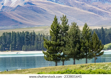 Lake Tekapo, South Island, New Zealand - stock photo