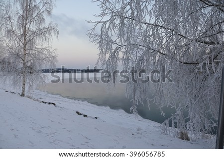 Lake, trees and snow in winter day