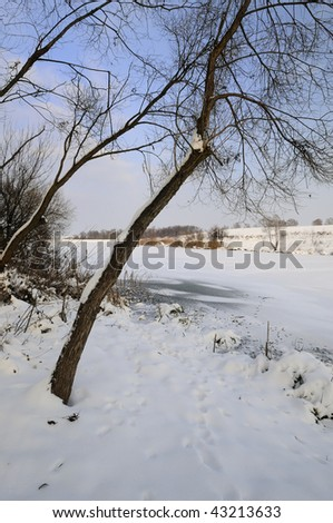 Lake under the snow