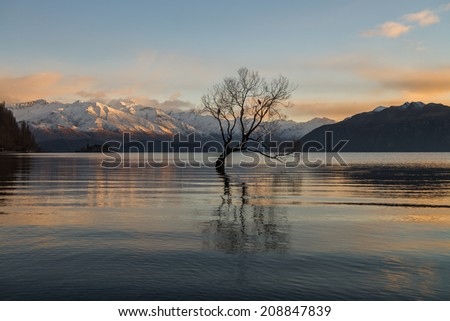 Lake Wanaka, New Zealand  - stock photo