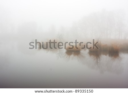 Lake with islands of rushes  in a dense fog - stock photo