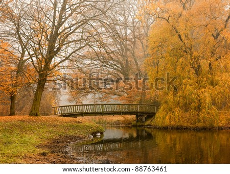 Lake with wooden bridge in foggy autumnal park