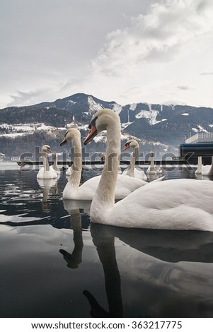 Lake Zell am See in the winter, Austria - stock photo