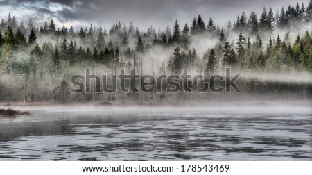 Lakeside forest with dramatic fog - stock photo