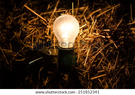lamp on dry straw background
