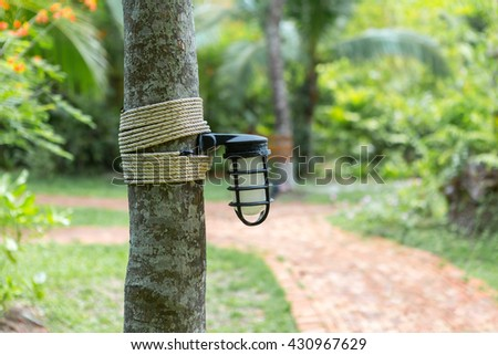 Lamp on tree with walk way background. - stock photo