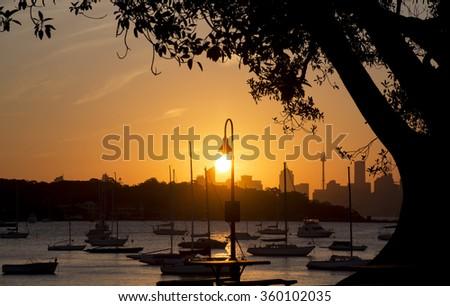 Lamp Post in Sunset, Sydney, Australia - stock photo