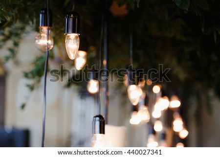 Lamps in black caps hang from a ceiling with greenery - stock photo