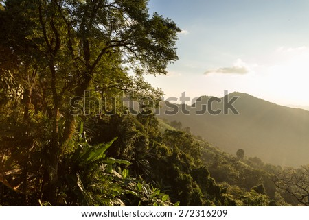 Land Before Time Landscape at Phu Chi Fa, North Thailand - stock photo