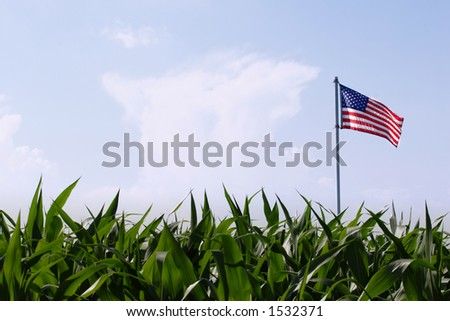 Land of Plenty - stock photo