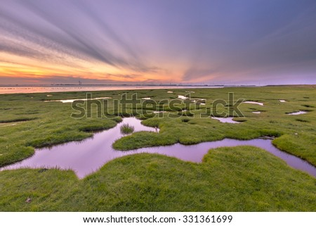 Land reclamation in the tidal marsh of the Punt van Reide in the Waddensea area on the Groningen coast in the Netherlands - stock photo