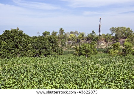 Land rig drilling an exploration oil well in the middle of tobacco fields in Indonesia - stock photo