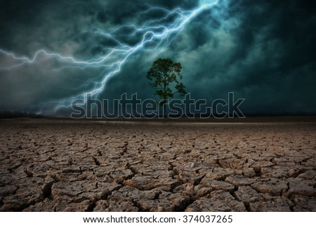 Land to the ground dry cracked and big tree. With lightning storm
