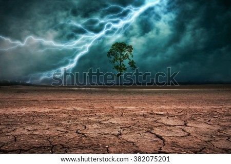 Land to the ground dry cracked and big tree. With lightning storm - stock photo