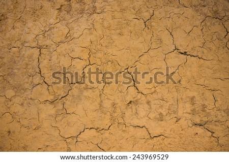 Land with cracked ground. - stock photo
