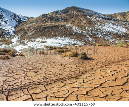 Land with dry and cracked ground. - stock photo