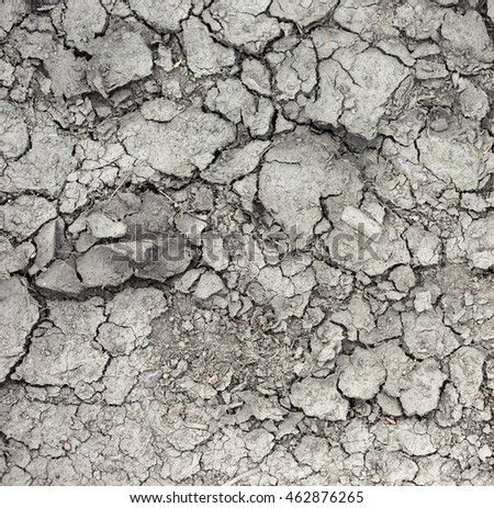 Land with dry and cracked ground.
