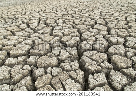 land with dry cracked ground after hot wave - stock photo