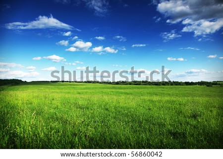 Landscape. - stock photo