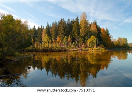 Landscape. A wood-reflection in lake