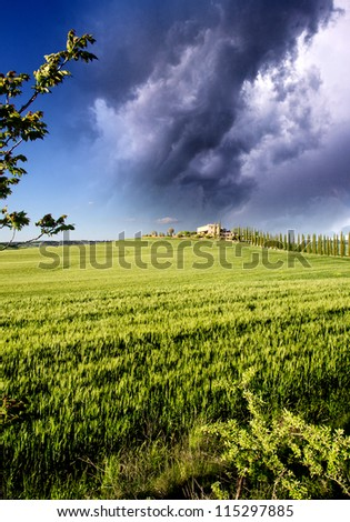 Landscape and Meadows of Tuscany in Spring, Italy
