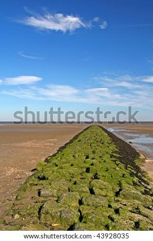 Landscape at North Sea, Germany - stock photo