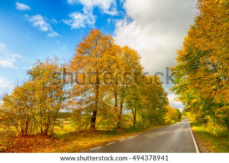 Landscape - autumn road between fields with trees. Poland -Europe