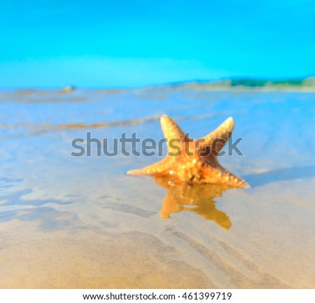 Landscape Beach Star