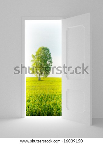 Landscape behind the open door. 3D image - stock photo