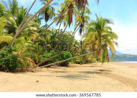 landscape Costa Rica, playa Uvita - stock photo