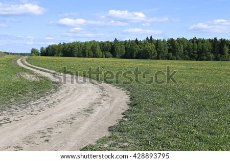 Landscape country road in the field with green grass and forest