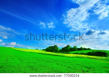 landscape,countryside, horizon,field,corn - stock photo