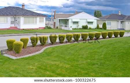 Landscape design. Nicely trimmed bushes at the front yard. Empty street and great quiet neighborhood.  North America. - stock photo