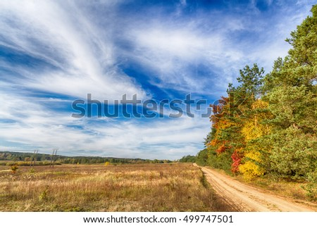 Landscape - forest road with amazing autumn colors. White clouds and blue sky. Sunny day.