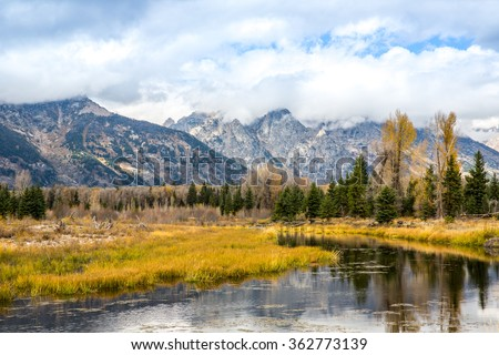 Landscape from Schwabacher Landing in Grand Teton National Park.
