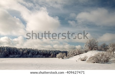 Landscape.frozen snowy lake, trees before the storm. - stock photo