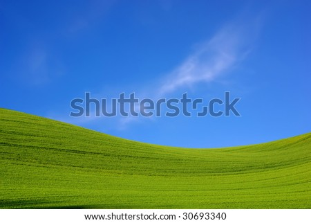 Landscape - green filed, the blue sky and white clouds