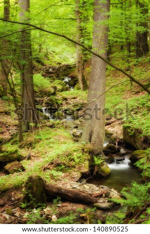 Landscape image of beautiful little waterfall in woods of Sudety mountains