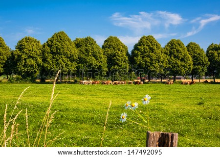 Landscape in Europe - stock photo