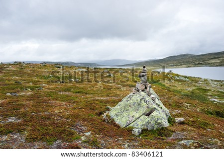 Landscape in Hardangervidda national park, Norway