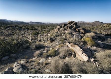 Landscape in Joshua Tree National Park, California - stock photo