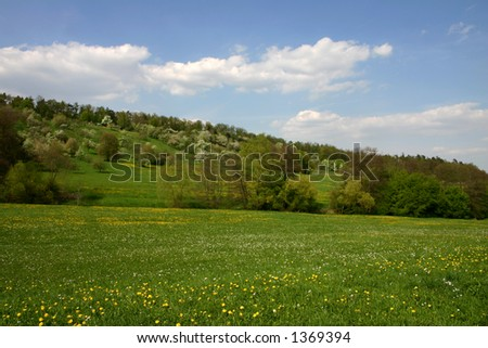 Landscape in May