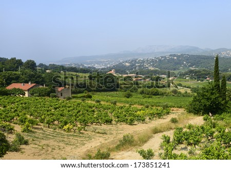 Landscape in Provence near Marseille (Bouches-du-Rhone, Provence-Alpes-Cote d'Azur, France) at summer