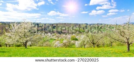 Landscape in spring - Remstal, Germany - stock photo