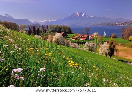 Landscape in Switzerland - stock photo