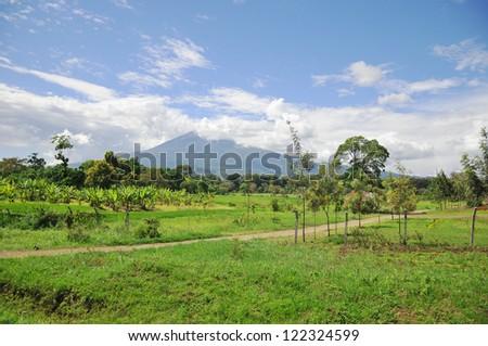 Landscape in tanzania - stock photo