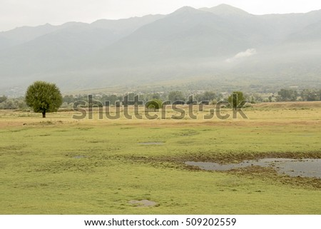 Landscape in the area of Kerkini lake in northern Greece