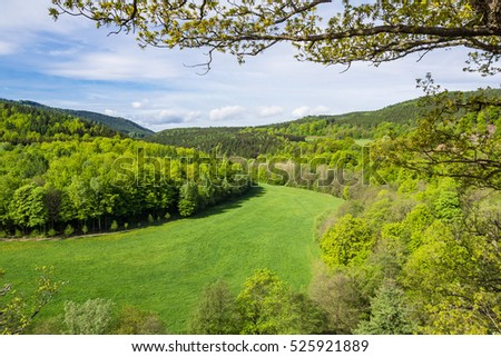 Landscape in the Thuringian Forest with trees and meadow.