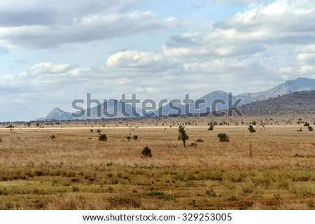 Landscape in Tsavo National Park, Kenya, Africa - stock photo