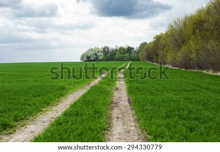 Landscape - land road in the green wheat field